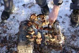 Вид приветственного SEO шашлыка в 2015 году